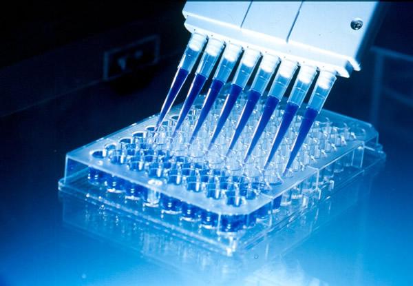 Wilex – Pharmawert mit Zukunft?